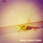 smallreactions