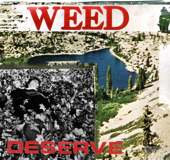 weed_cover