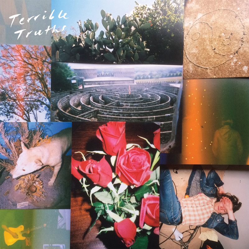 Terrible Truths 2015 LP cover PRINT READY